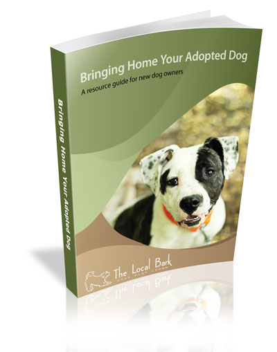 Sacramento dog boarding Adopted-Dog---Cover.jpg